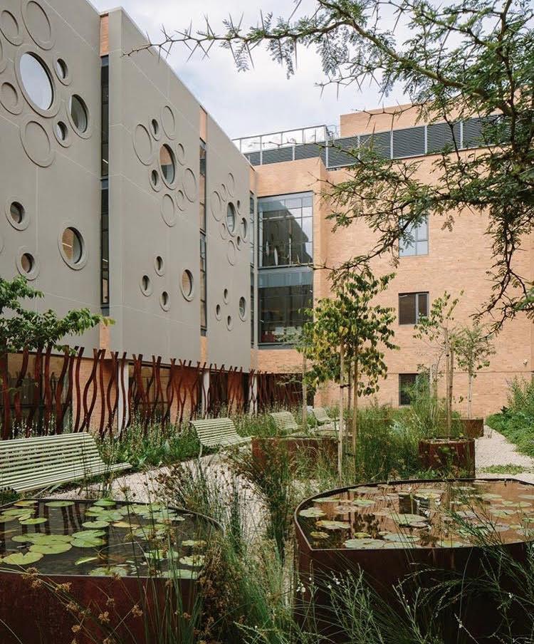 Area externa de hospital com muitas plantas, árvores e bancos.